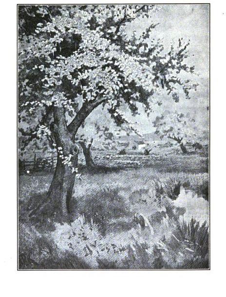 [graphic][ocr errors][subsumed][ocr errors][ocr errors][ocr errors][ocr errors][ocr errors][ocr errors][ocr errors][subsumed][ocr errors][ocr errors][ocr errors][ocr errors][ocr errors][subsumed][subsumed][ocr errors][subsumed][subsumed][ocr errors][subsumed][ocr errors][ocr errors][ocr errors][subsumed][ocr errors][subsumed][subsumed][subsumed][ocr errors][ocr errors][ocr errors][ocr errors][ocr errors][ocr errors][subsumed][ocr errors][ocr errors][subsumed][ocr errors][subsumed][ocr errors][ocr errors][ocr errors][ocr errors][ocr errors][subsumed][ocr errors][ocr errors][ocr errors][ocr errors][subsumed][subsumed][subsumed][subsumed][ocr errors][ocr errors][subsumed][ocr errors][ocr errors][subsumed][ocr errors][subsumed][ocr errors][ocr errors][ocr errors][subsumed][ocr errors][subsumed][subsumed][ocr errors][ocr errors][subsumed][ocr errors][ocr errors][ocr errors][ocr errors][subsumed][ocr errors][subsumed][ocr errors][ocr errors][subsumed][ocr errors][ocr errors][ocr errors][ocr errors][ocr errors][subsumed][subsumed][ocr errors][ocr errors][ocr errors][subsumed][ocr errors][ocr errors][ocr errors][subsumed][ocr errors][ocr errors][ocr errors][ocr errors][ocr errors][ocr errors][ocr errors][ocr errors][ocr errors][ocr errors][subsumed][subsumed][subsumed][subsumed][ocr errors][subsumed][subsumed][subsumed][ocr errors]